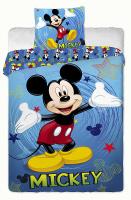 Mickey_2014_blue.jpg