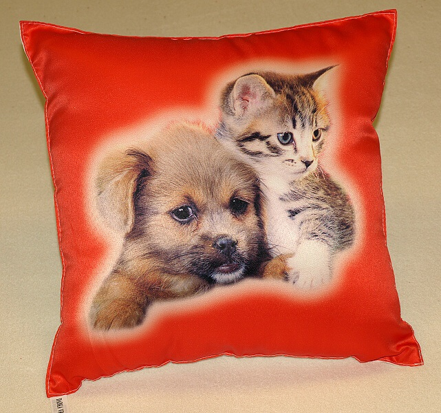 Fotopolštářek Kotě a pes na červeném 40x40