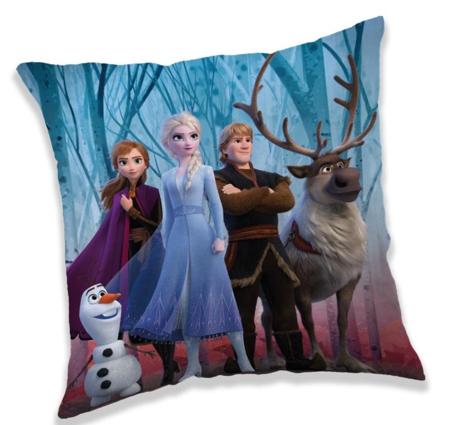 Polštářek Frozen 2 in forest 40x40 cm