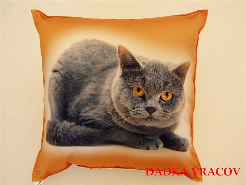 Fotopolštářek Kočka 40x40