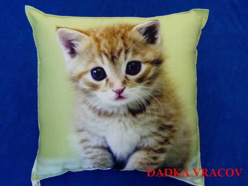 Fotopolštářek Kotě na zeleném 40x40