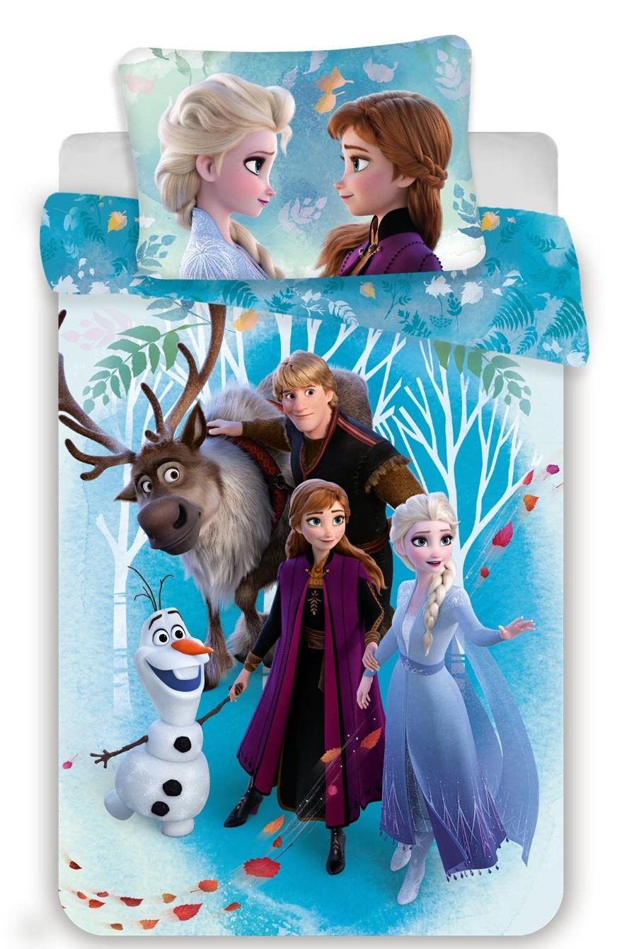 Disney povlečení do postýlky Frozen 2 baby 100x135, 40x60 cm