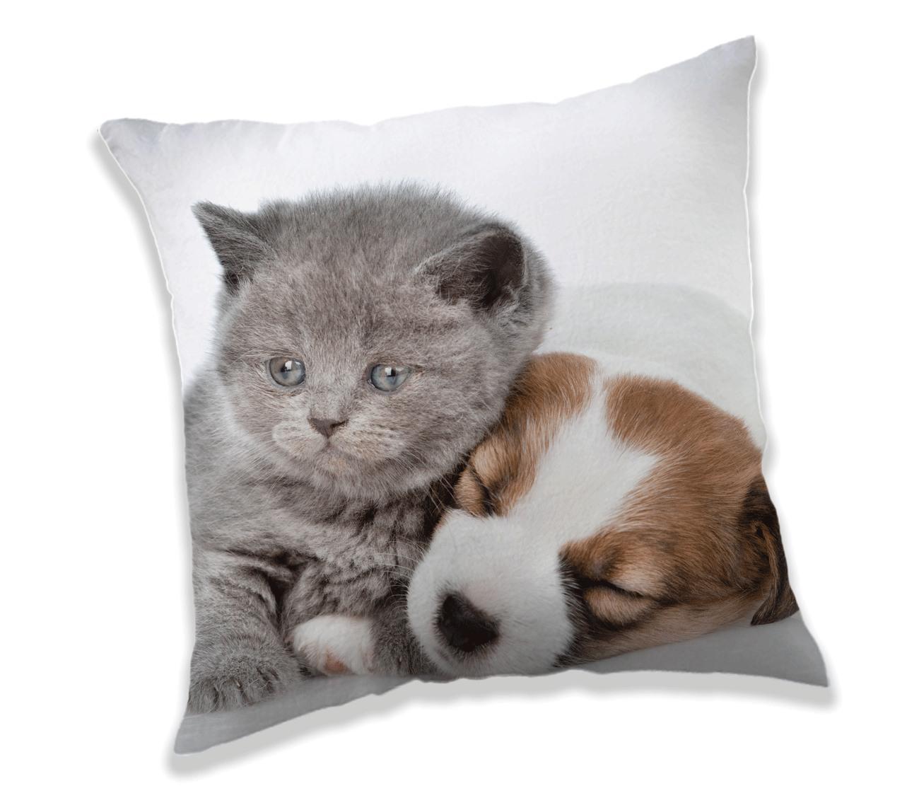 Polštářek Puppy and Kitten 40x40 cm