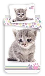 Povlečení fototisk Kitten colour 140x200, 70x90 cm