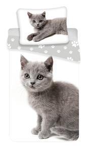 Povlečení fototisk Kočka grey 02 140x200, 70x90 cm
