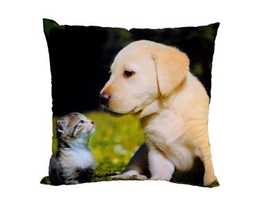 Fotopolštářek Kotě a štěně na trávě 40x40