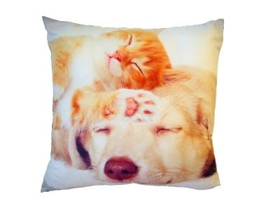 Fotopolštářek Spící kočka se psem 40x40